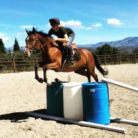 Monica - Colt Training & Horse Schooling