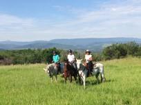 Patti, Harper, and Colton take to the trails!