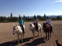 Pre-trail ride lesson