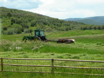JH Homestead - Pasture Leasing & Mgt., Fence & Gate Repair & Hay Harvest Contract