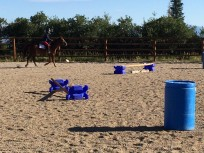 Jumps galore!
